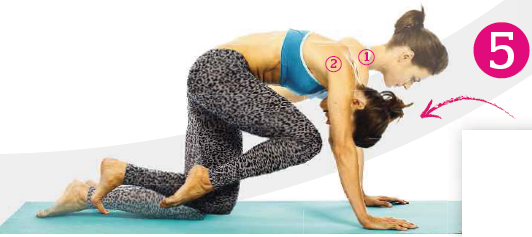 Description: From all fours, arch your back, bringing your right knee to your nose