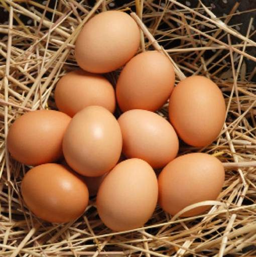 Description: 'Eggs also contain phospholipids, which help to keep your brain healthy,' adds Patrick.