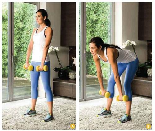 Description: Works: hamstrings, glutes, lower back, abs, biceps and forearms