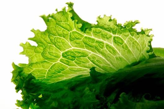 Description: Salad is good for your health.