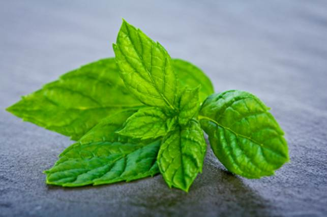 ½ cup fresh mint leaves