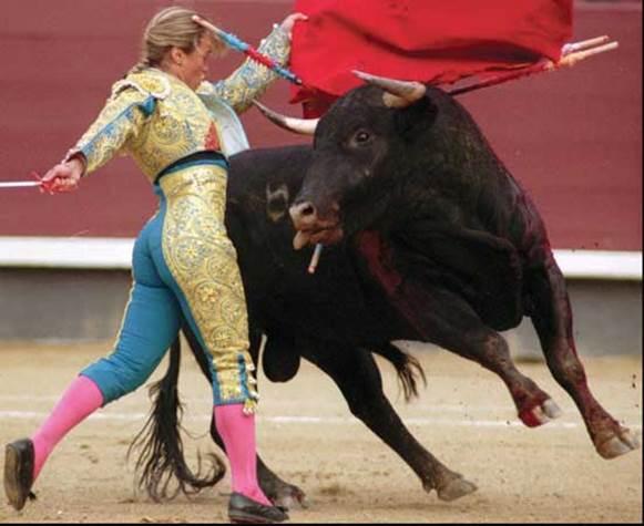 The bullfights in Madrid