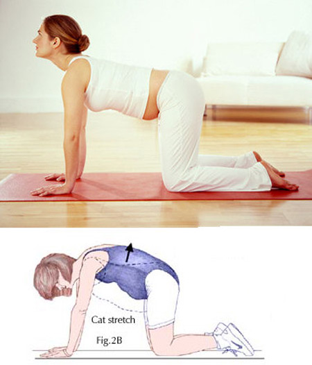 Pregnant women having good exercise mode will make the abdominal muscles healthy and firmer.