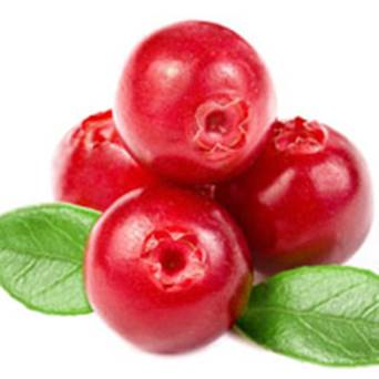 The effects of cranberry on health
