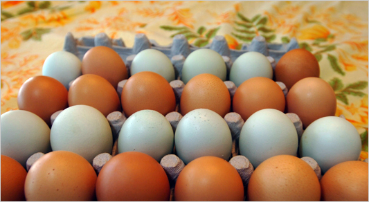 Research shows that egg is rich in vitamins which can prevent acne.