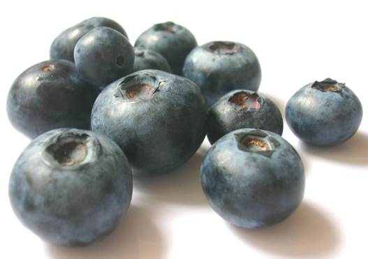 Blueberries are good for people who suffer hemorrhoids.