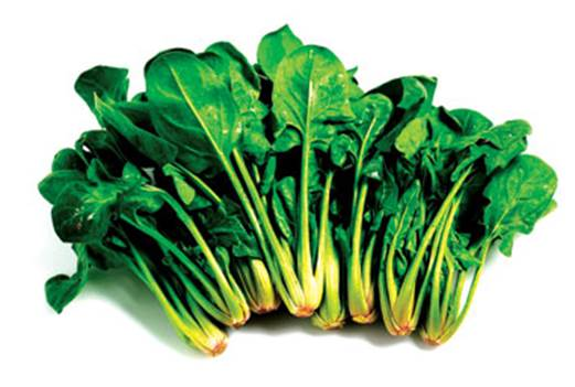Spinach is good for the entire digestive tract, and is considered effective in cleaning and restoring the gut.