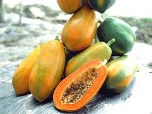 Papaya has ability to aid digestion and prevent constipation.