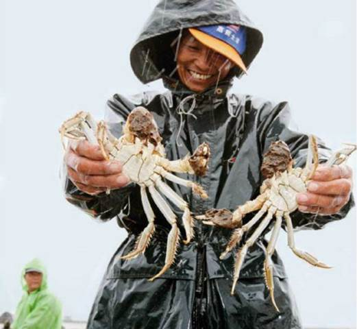 The women sell shrimp and crab harvested from canals and dried fish.