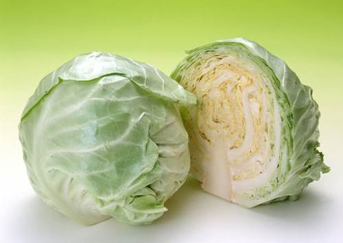 Description: Cabbage contains lots of fats that are good for your brain such as omega 3, which helps to increase fetus growth.