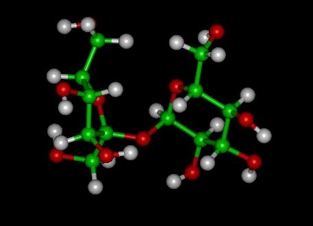 A glucose attached to a fructose equals a sucrose (source: ); green is carbon, red is oxygen, and white is hydrogen